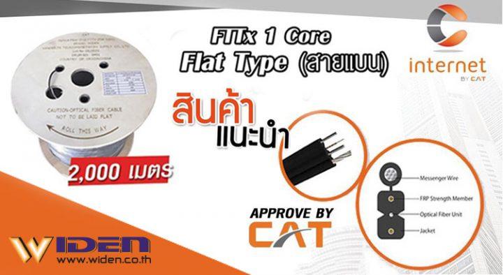 Widen Fiber Drop FTTx(Flat Type), CAT Fttx
